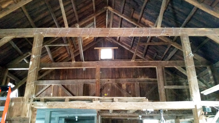 Purlin roof in 3 bay English style barn at 201 Larch Row  in Wenham